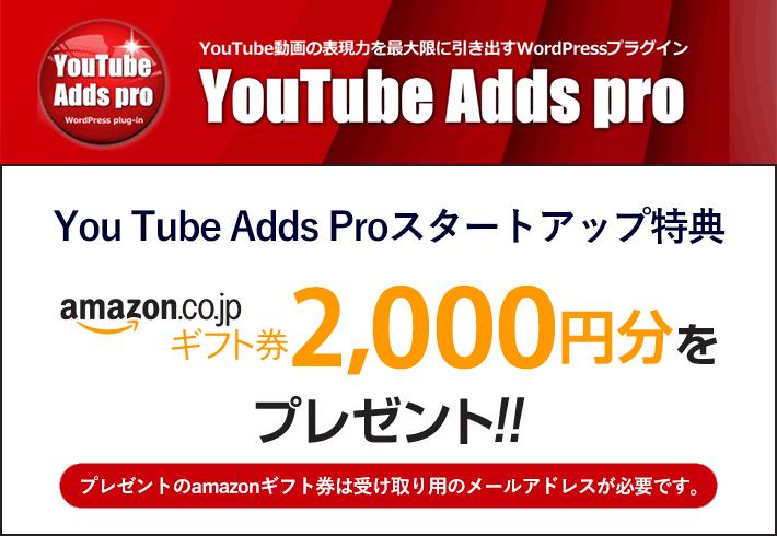 YouTubeAddsPro特典